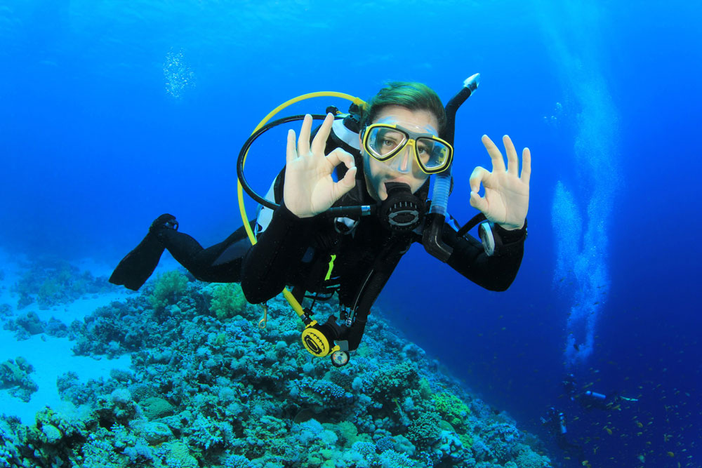 Book for Your Scuba Course Today!